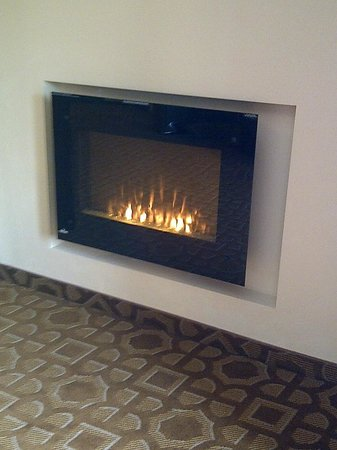 Holiday Inn Hotel & Suites Durango Central : Decorative Electric Fireplace