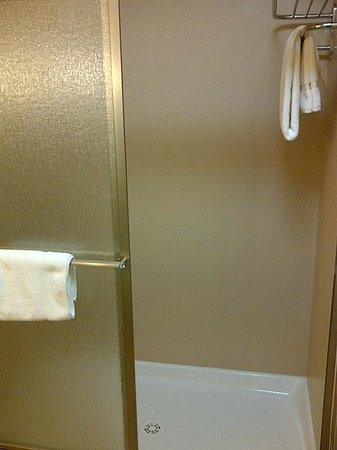 Holiday Inn Hotel & Suites Durango Central : Shower Only (no tub)