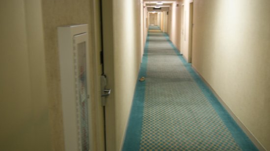 Extended Stay America - Greensboro - Wendover Ave.: how depressing