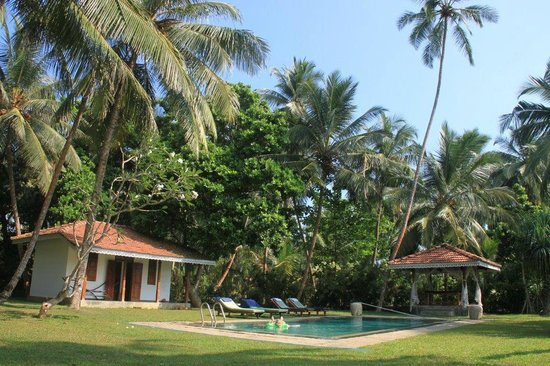Villa Modarawattha: swimming pool
