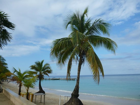 Paradise Beach Hotel: plage