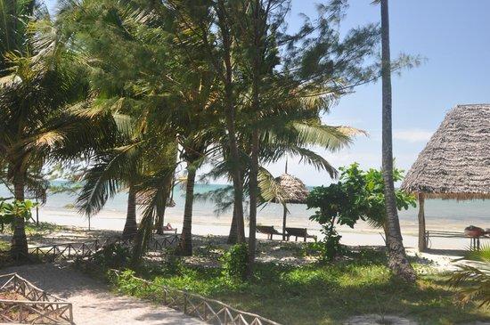 Butiama Beach: und 20m vor den zimmern das meer