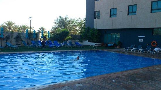 فندق اريبيان بارك: Бассейн