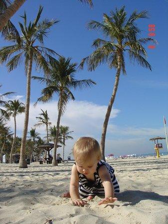 Arabian Park Hotel: пляж от отеля- джумейра бич парк платный