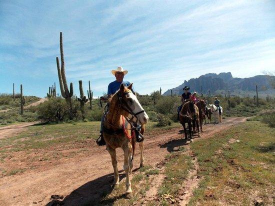 OK Corral: Stopping half way to check the saddles