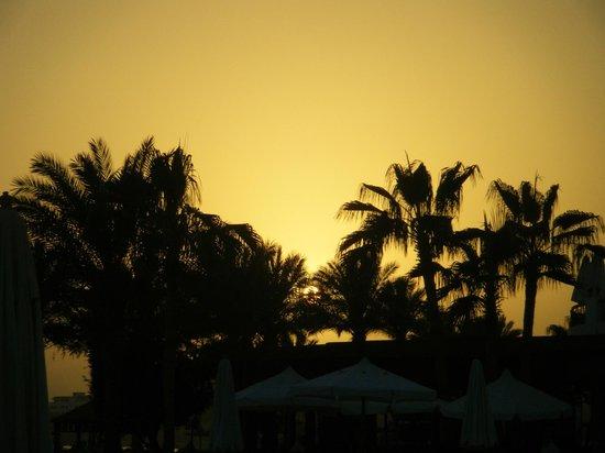 Sinai: Sunset