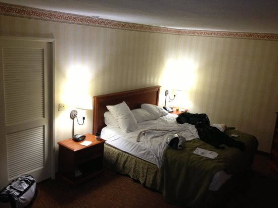 Best Western Plus Raffles Inn & Suites : Main room with large comfortable bed.