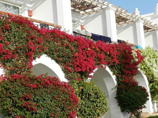 Melia Sinai: Balconies