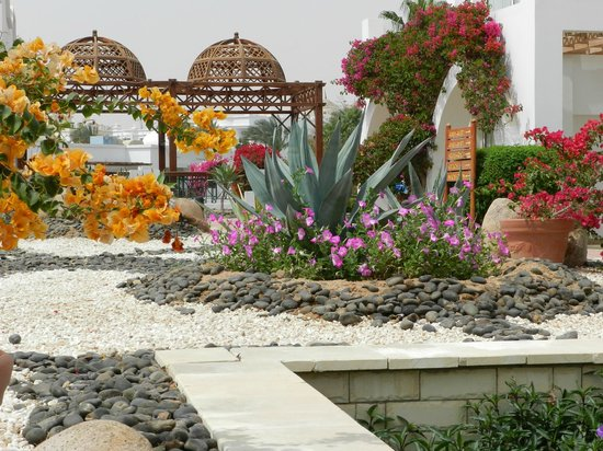 Melia Sinai: Gardens