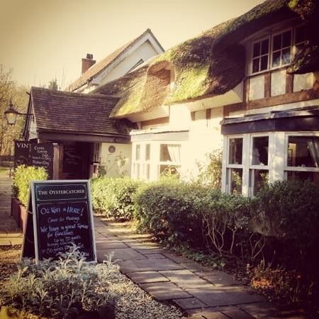 The Oystercatcher: winters sunny day
