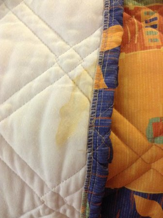 Super 8 North Palm Beach: Stain on bedspread