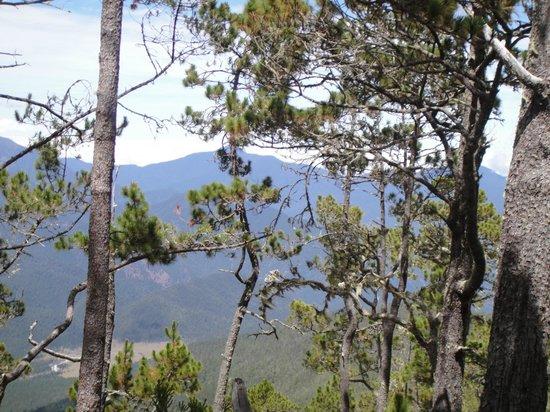 Pico Duarte: vista subiendo la montaña La Pelona
