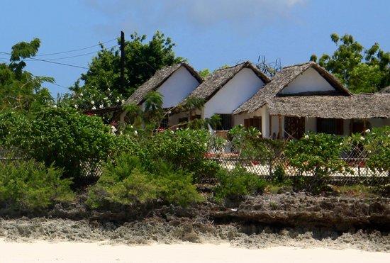 La Papaye Verte: Vue de la plage