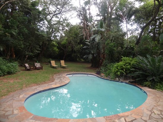 Gooderson Bushlands Game Lodge: Piscine