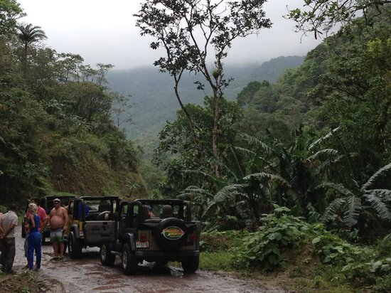 Jungle Jeep Adventure: jja