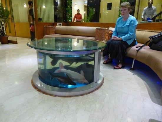 Hotel Supreme: fish tank in reception area