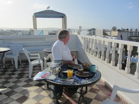 Riad de la Mer : breakfast with a friend - the feathered variety !