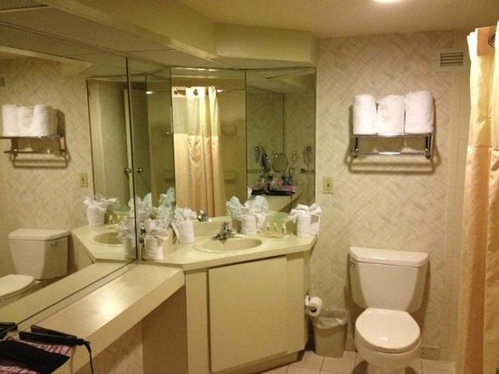 Holiday Inn Executive Center - Columbia: bathroom is spacious, but dated