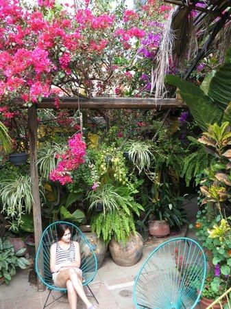 Las Golondrinas: courtyard gardens1