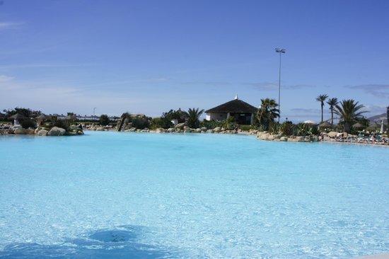 ClubHotel Riu Tikida Dunas: Best pool ever