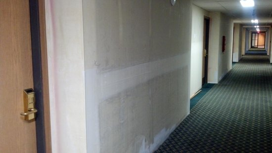 Quality Inn & Suites Airport: WALLS IN THE HALL