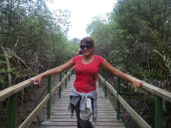 Manglares Churute Mangrove Tours: Beginning the tour