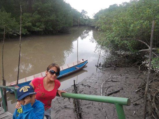 Manglares Churute Mangrove Tours: contacting Nature