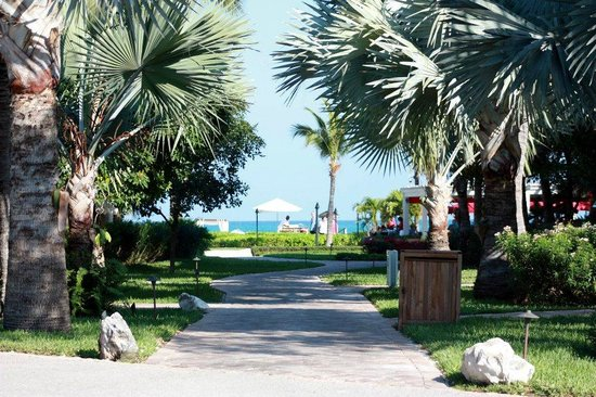 Villa del Mar: Standing at crossing from VDM to the beach - it is REALLY close, only a few minutes walk at most