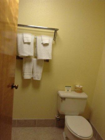 Super 8 Oceanside Marty's Valley Inn: Toilette