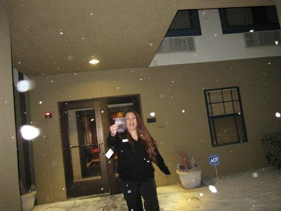 Extended Stay America - Albuquerque - Rio Rancho : Sarita Chickita Banana came out to see snow