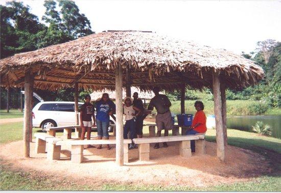 La Vega Garden Centre: drive up carrat shed