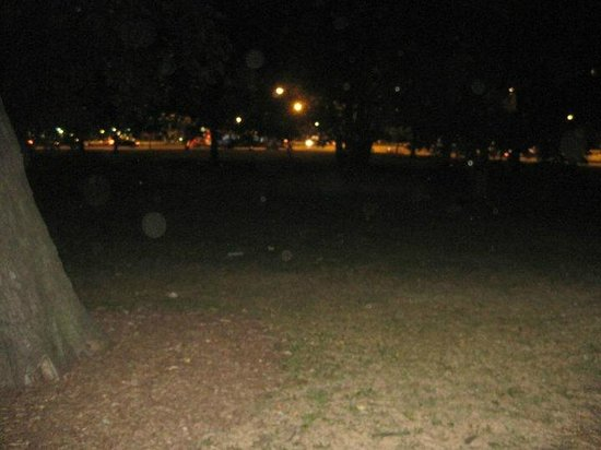 Chicago Hauntings: More ghost orbs from old Chicago Cemetery