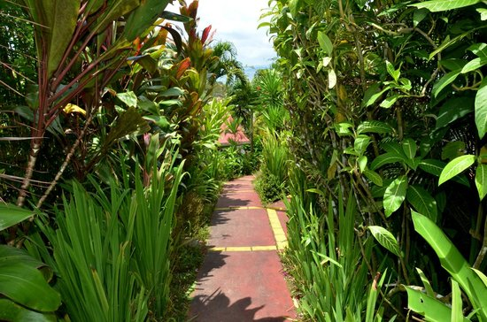 La Mansion Inn Arenal Hotel: path to our cottage