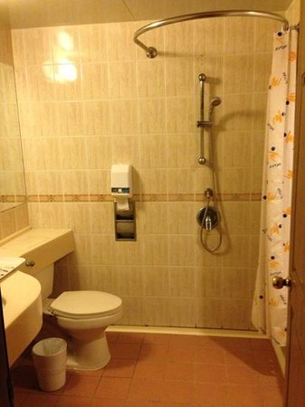 Goya Hot Springs Hotel & Spa: Unattractive bathroom and shower situation.