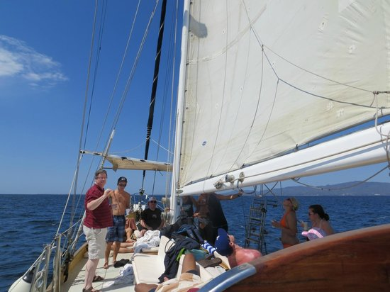 Pegaso Chartering: chatting away