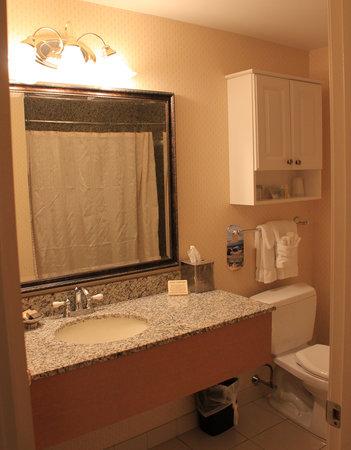 Port Inn, an Ascend Hotel Collection Member : Comptoir de granit... comme les murs de la douche