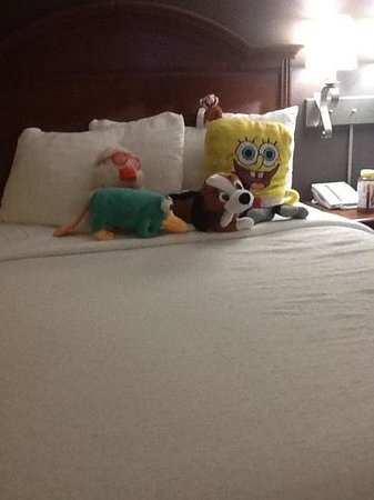 Holiday Inn Hotel & Suites Anaheim (1 BLK/Disneyland): so nice of them to arrange my sons stuffed animals