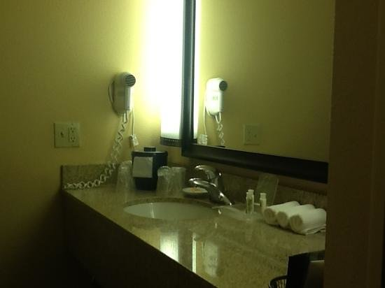 Holiday Inn Hotel & Suites Anaheim (1 BLK/Disneyland): I liked that it was around the corner from the beds, it gave me a lil privacy