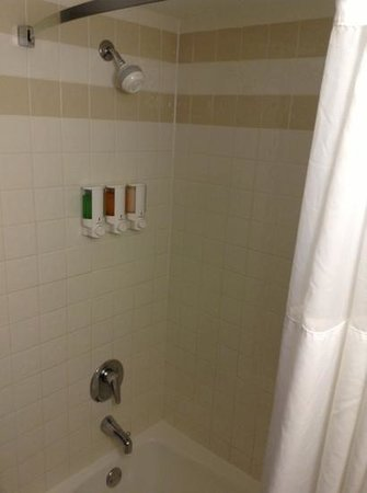Drury Inn & Suites Atlanta Airport: Shower with Euro-style shower dispensers
