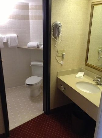 Drury Inn & Suites Atlanta Airport : Sink outside bathroom/shower