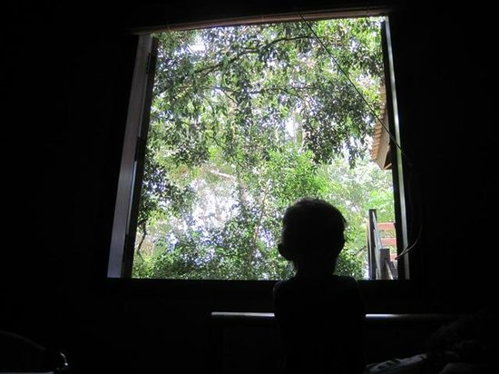Pousada Bambu: Uma janela para a natureza