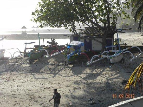 Pondok Bambu: Boats