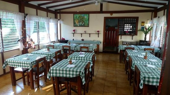 Hotel La Rosa de America: Dining room. Informal, but pleasant, clean, and good food.