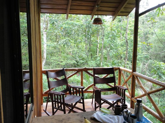 Tree Houses Hotel Costa Rica: Watch the birds anytime of the day