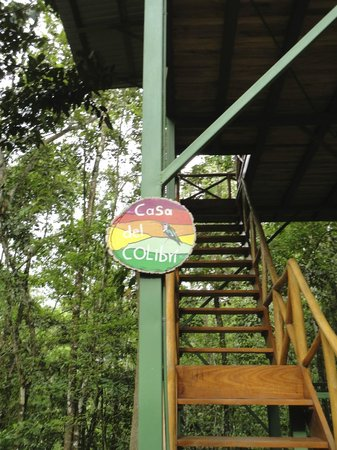 Tree Houses Hotel Costa Rica: Entrance to our tree house