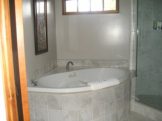 The Canyon Villa: Jacuzzin tub in room