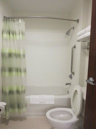 SpringHill Suites Nashville MetroCenter: bathroom