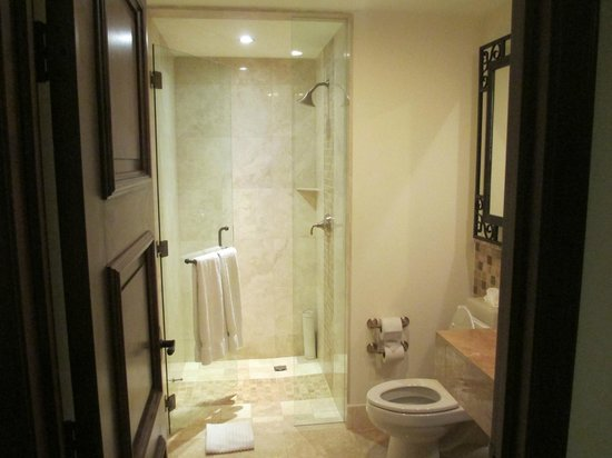 Grand Solmar Land's End Resort & Spa: Bathroom #1
