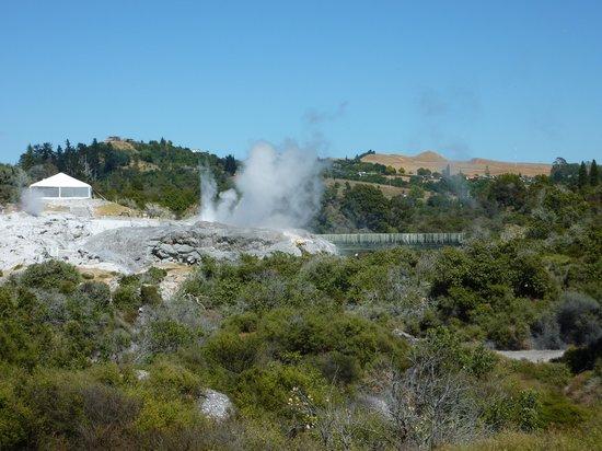 Whakarewarewa: The Living Maori Village: Geyser