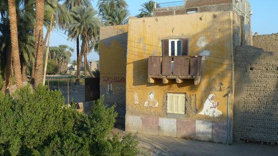 Shahaina Guesthouse